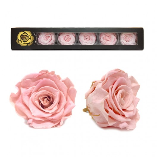 Baby Light Pink Rose Heads Large - 6 per box