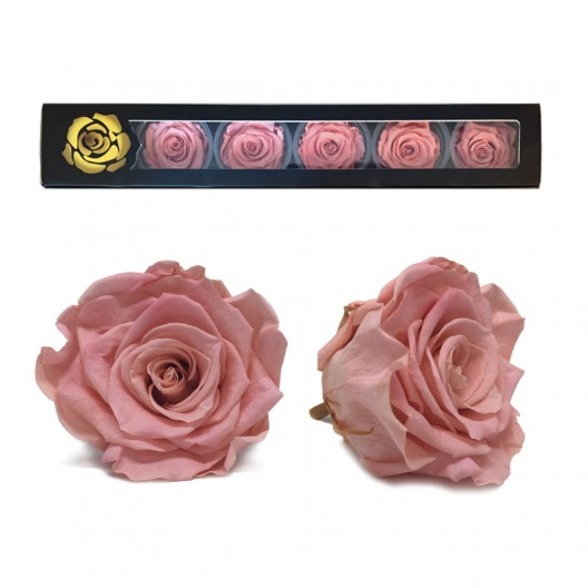 Classic Pink Rose Heads Large - 6 per box