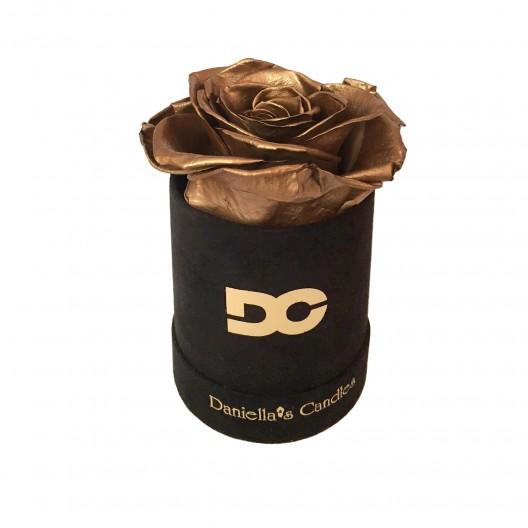 Single Preserved Rose Gold - Black Suede Box