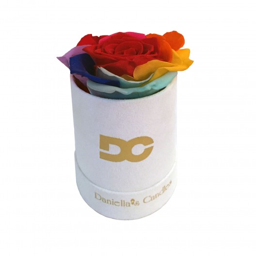 Single Preserved Rose Rainbow - White Suede Box